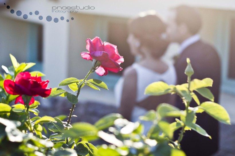 onaestudio photography